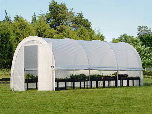 tent tepl9